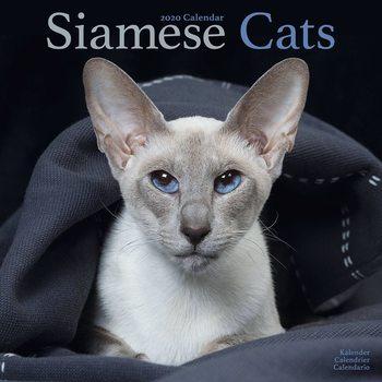 Kalendář 2021 Siamese