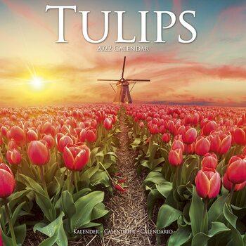 Kalendár 2022 Tulipány