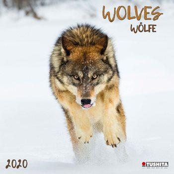 Kalendář 2021 Vlci