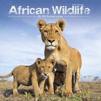 Kalendář 2019  Africká zvířata