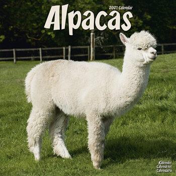 Kalendár 2021 Alpaky