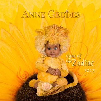 Kalendář 2017 Anne Geddes - Zodiac