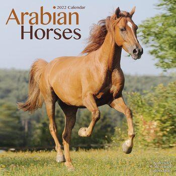Kalendář 2022 Arabské koně