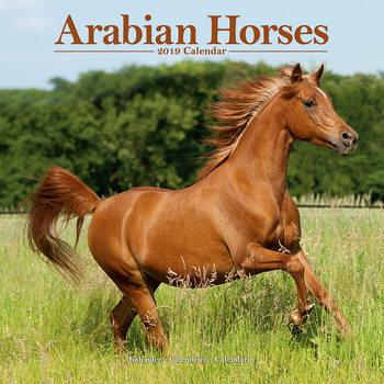 Kalendář 2019  Arabské koně