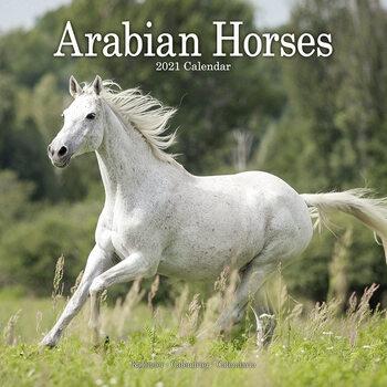 Kalendár 2021 Arabské Koně