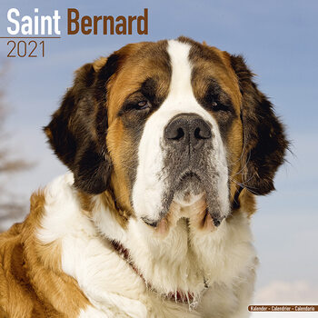 Kalendár 2021 Bernardín