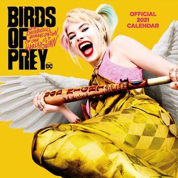 Kalendár 2021 Birds of Prey: Podivuhodná premena Harley Quinn - Cosy Heart