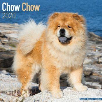 Kalendář 2020  Čau Čau