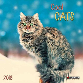 Kalendár 2018 Cool Cats