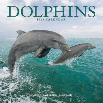 Kalendář 2019  Delfíni