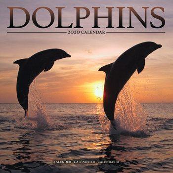 Kalendář 2020  Delfíni