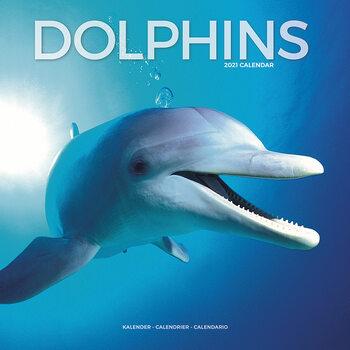 Kalendár 2021 Delfíny