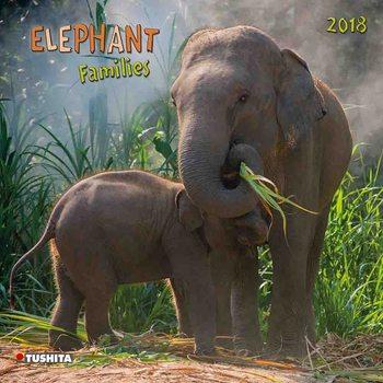 Kalendár 2018 Elephant Families
