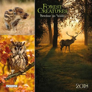 Kalendár 2018 Forest Creatures