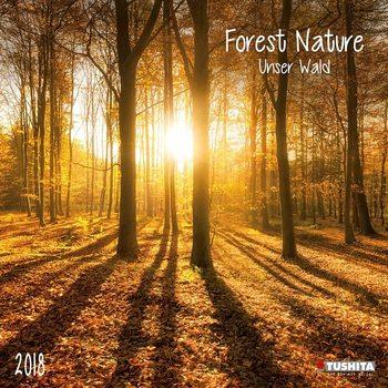 Kalendár 2018 Forest Nature