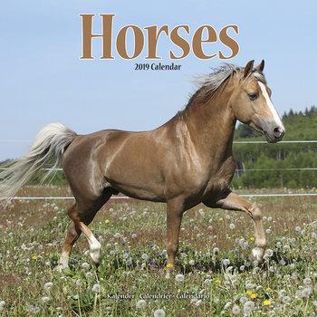 Kalendár 2019  Horses
