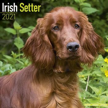 Kalendár 2021 Írsky Seter