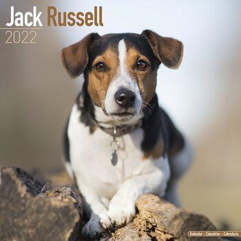 Kalendář 2022 Jack Russell