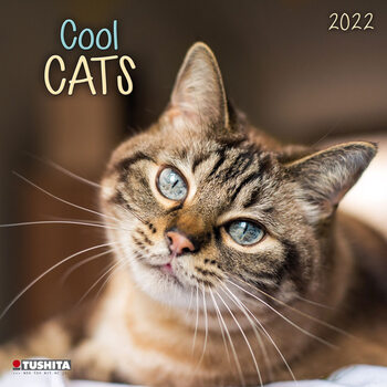 Kalendář 2022 Kočky