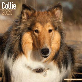 Kalendář 2020  Kolie