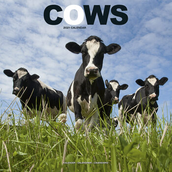 Kalendár 2021 Kravy