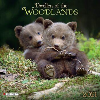 Kalendár 2021 Lesné Zvieratká