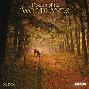 Kalendář 2022 Lesní zvířata
