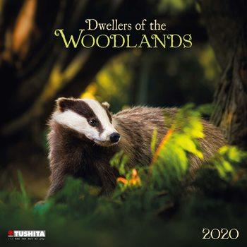 Kalendář 2020  Lesní Zvířata