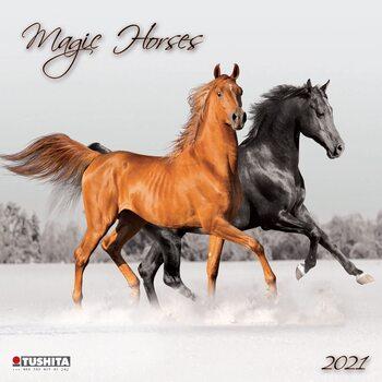 Kalendár 2021 Magic Horses