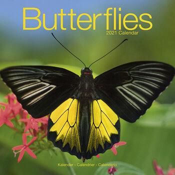 Kalendár 2021 Motýle