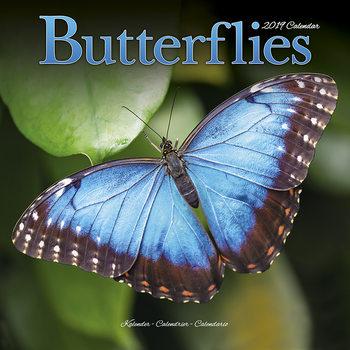 Kalendář 2019  Motýli