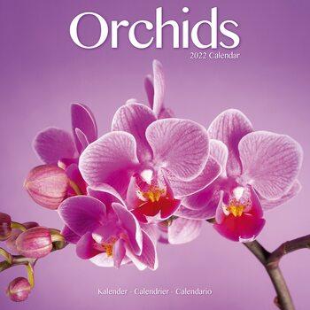 Kalendář 2022 Orchideje