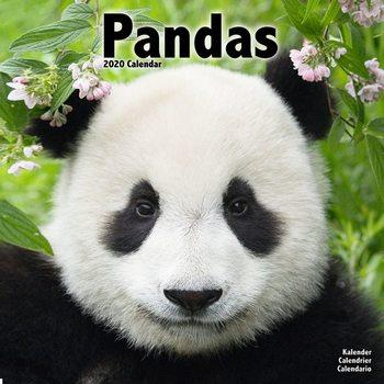 Kalendář 2020  Pandy