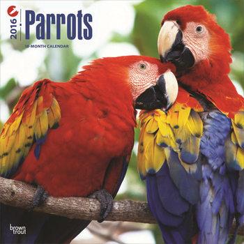Kalendár 2017 Papagáje