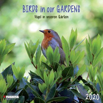 Kalendář 2020  Ptáci