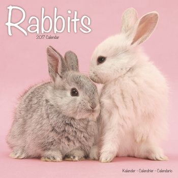 Kalendár 2017 Rabbits