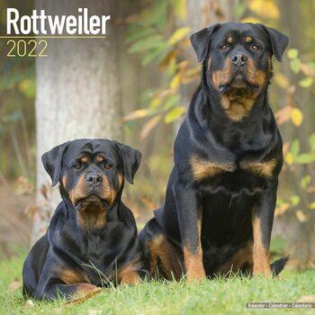 Kalendář 2022 Rotvajler