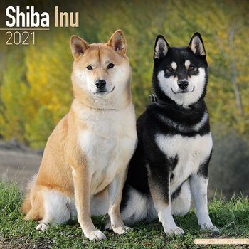 Kalendár 2021 Shiba Inu