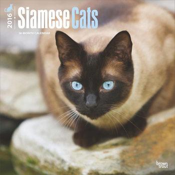 Kalendár 2017 Siamská mačka