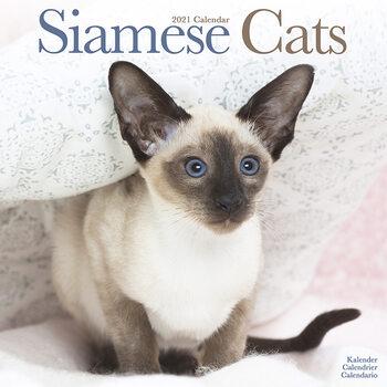 Kalendár 2021 Siamské Mačky