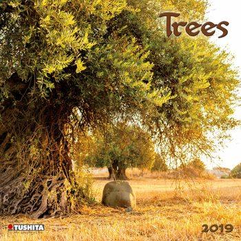 Kalendář 2019  Stromy