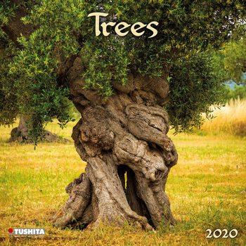 Kalendář 2020  Stromy