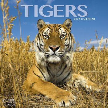 Kalendář 2022 Tygři