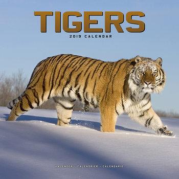 Kalendář 2019  Tygři