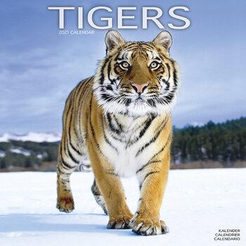 Kalendář 2021 Tygři