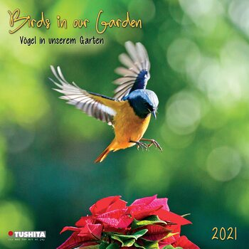 Kalendár 2021 Vtáky
