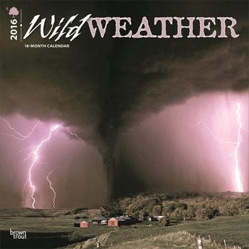 Kalendár 2021 Wild Weather