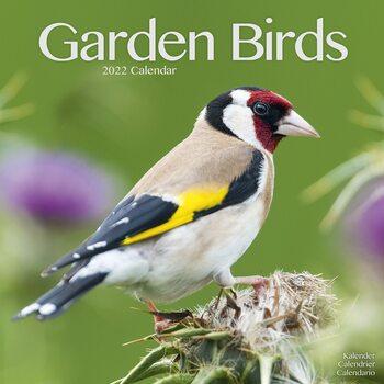 Kalendář 2022 Zahradní Ptáci