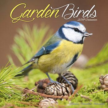 Kalendář 2019  Zahradní Ptáci