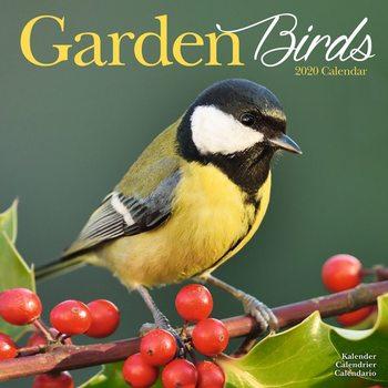 Kalendář 2020  Zahradní Ptáci